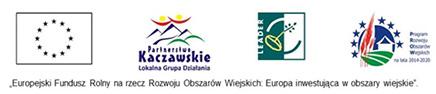 Logo Projektów