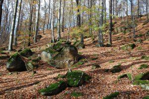 Rumowiska skalne- prusicka góra
