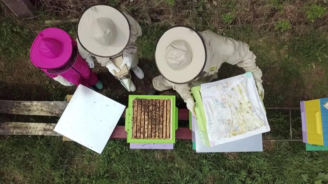 Zwiedzanie górskiej pasieki BeeKapella